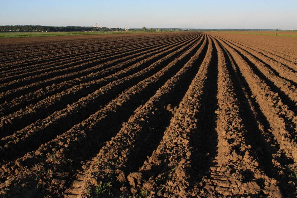 Large land plot of almost 15,000 acres in the south of Russia