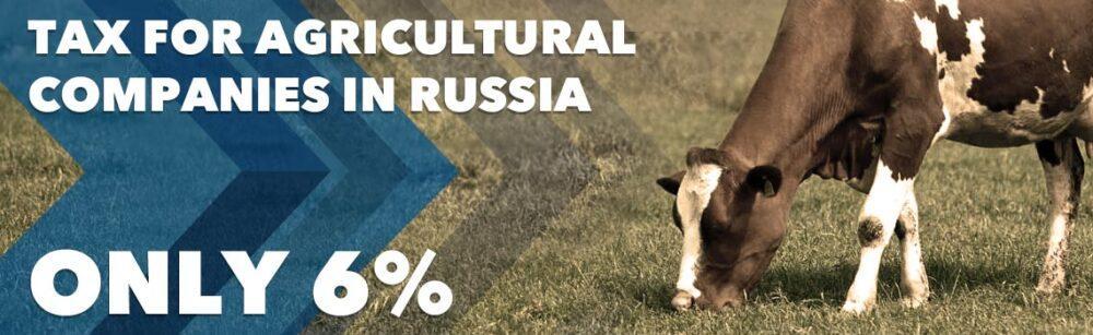 Farmers grow in Russia