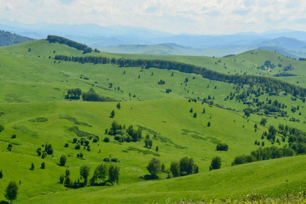Land in Altai region