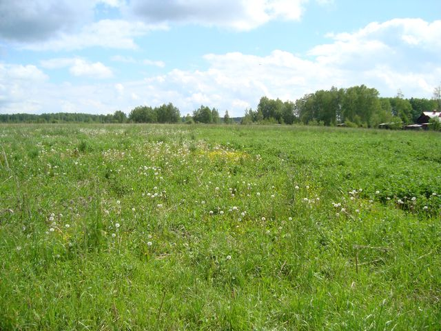 Land plot of 9 hectares for living